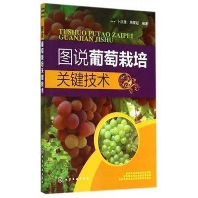 图说葡萄栽培关键技术 葡萄优质高效栽培技术 葡萄种植技术书籍