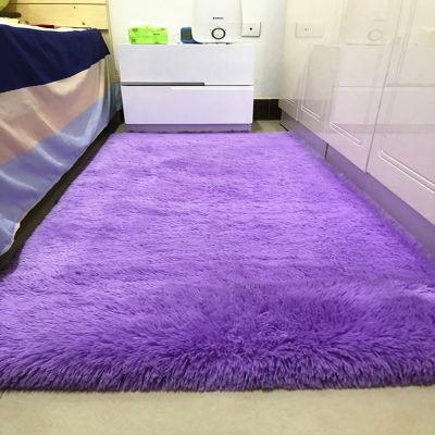 加厚地毯卧室客厅茶几床边飘窗榻榻米房间满铺少女心毛毯脚垫地垫主图