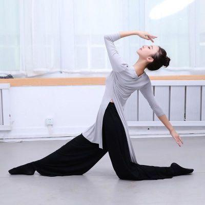 红舞舞蹈服女练功服成人新款 莫代尔形体舞现代舞古典舞练习学生