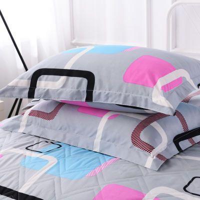 枕套枕头套一对装加大号48/76cm成人情侣单人学生宿舍枕芯套1个装