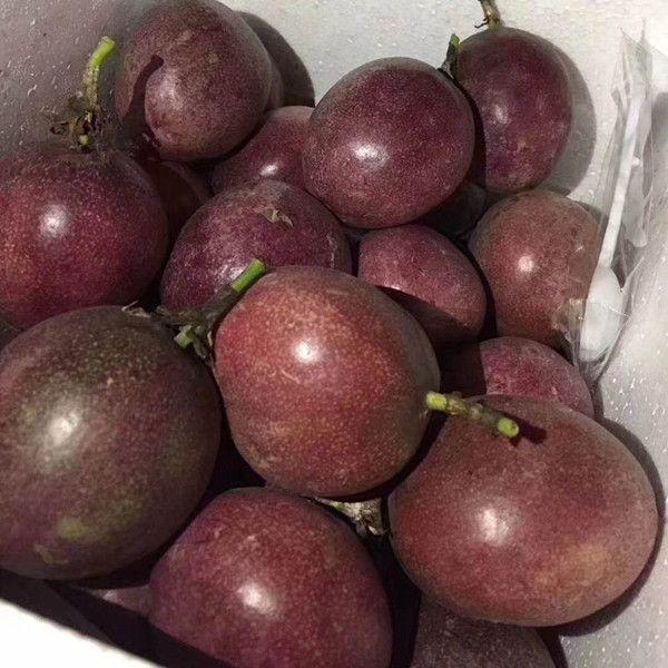 广西百香果5新鲜包邮白香果大果带箱6斤装一级西番莲10现摘鸡蛋果_7