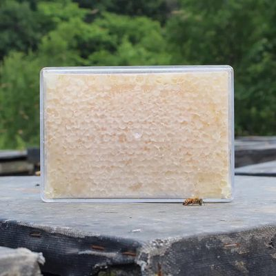 蜂蜜蜂巢蜜500g自产成熟封盖蜂蜜纯正天然土蜂蜜原蜜嚼着吃的蜂蜜