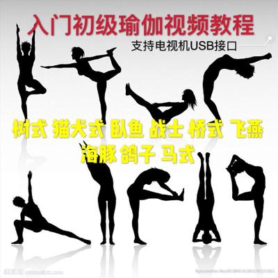 瑜伽教学高清初级入门教程瑜珈健身操初学教材高清视频