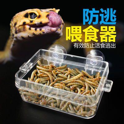 爬虫防逃喂食器食水盆防逃脱爬宠蜥蜴守宫鬃狮面包虫大麦虫
