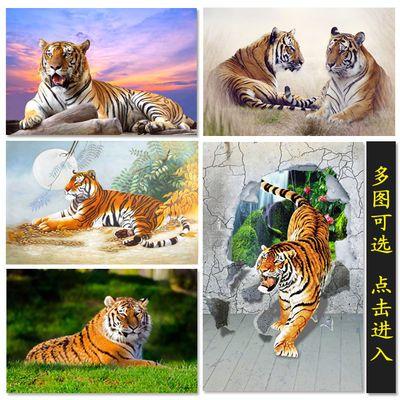 老虎海报 动物画 墙贴壁画办公室风水画走廊玄关挂画宿舍书房装饰