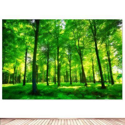 森林海报 茂盛树林 风景护眼图挂画办公室教室宿舍挂画墙画装饰画