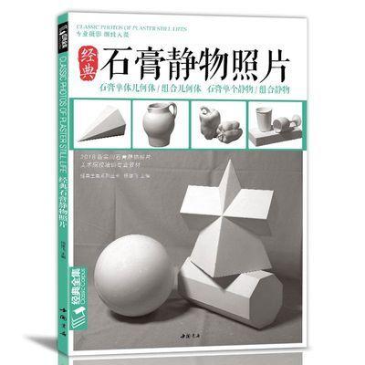 经典全集 石膏几何体静物照片书画素描专用专业摄影 杨建飞主
