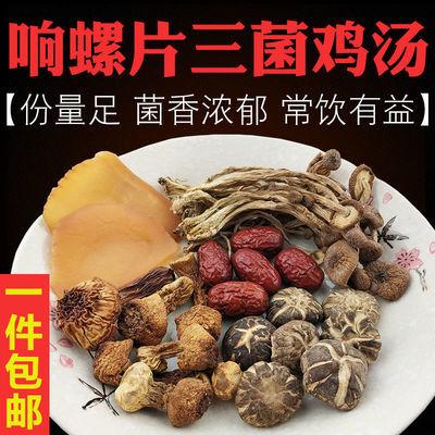 广东煲汤料滋补养生孕妇汤包料响螺片姬松茸茶树菇营养炖鸡汤料包