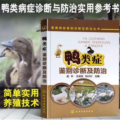 鸭类症鉴别诊断及防治 鸭病诊断治疗技术书 鸭子常见疾病特征症状