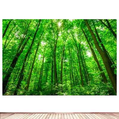 树木树林海报图片绿色自然风景背景图贴画书房宿舍装饰壁墙画挂画