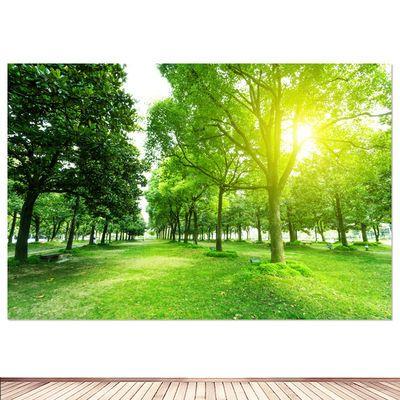 森林海报 树木树林 自然风景画背景图贴画房间宿舍装饰贴墙画挂画