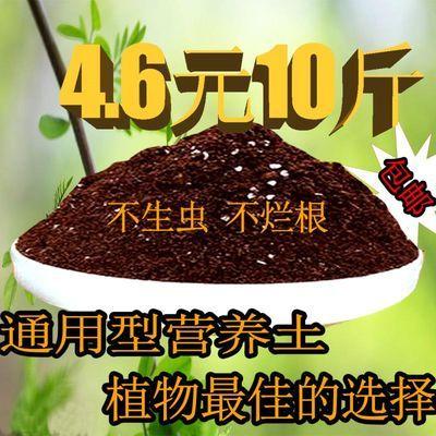 花卉盆栽茶花肥料专用肥山茶花有机肥复合肥营养土营养液茶树花肥