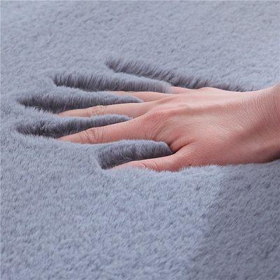 加厚长毛卧室地毯床边毯定制宜家水洗仿兔毛绒地毯客厅房间茶几垫