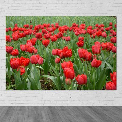 红色郁金香贴画 花卉图田园风光风景海报装饰画唯美宿舍墙壁画