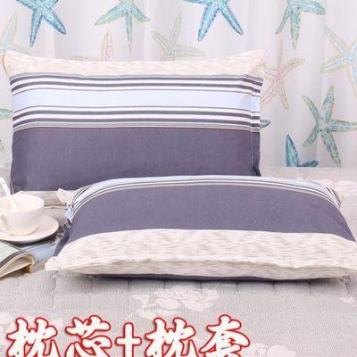 枕头单人单个套装学生宿舍枕芯加枕套一对装简约柔软可用成人