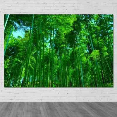 竹林竹子海报竹叶绿色护眼墙画壁画书房客厅装饰风景画贴墙挂画芯