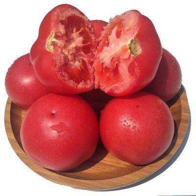 【顺丰包邮】山东现摘沙瓤西红柿3斤精品果新鲜蔬菜大番茄伍品汇