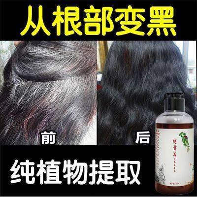 【纯天然植物洗发水】何首乌洗发水白发变黑发改善白发坚固发根