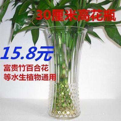 特价全国包邮玻璃透明花瓶摆件客厅富贵竹花瓶水培插花花瓶大号