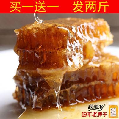 【买1斤送同品1斤】发两斤蜂蜜正品土蜂蜜500克/瓶农家野生土蜂蜜