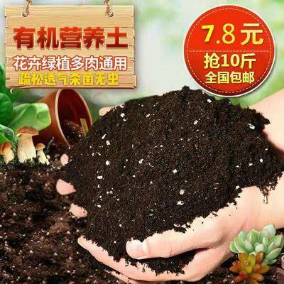 营养土通用型种花种菜土壤花肥料花卉绿萝盆栽多肉营养土有机花泥【3月8日发完】
