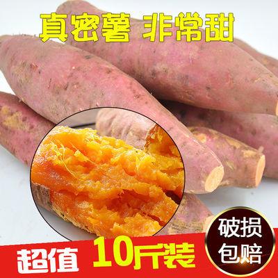 【超值10斤】新鲜板栗红薯红心密薯地瓜番薯紫薯甜山芋香甜软糯