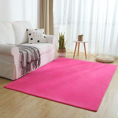 珊瑚绒地毯卧室床边毯茶几客厅地毯榻榻米满铺飘窗地垫可定制
