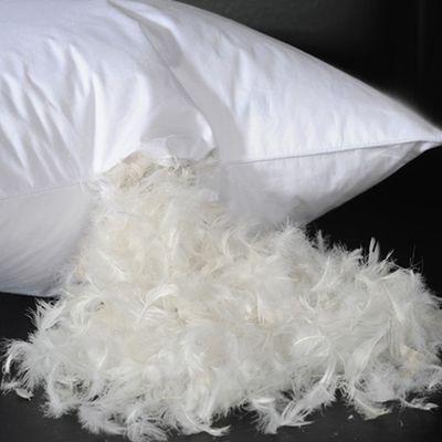 出口五星级酒店宾馆羽毛枕白鸭绒鹅羽毛枕芯枕头柔软单人保健枕头