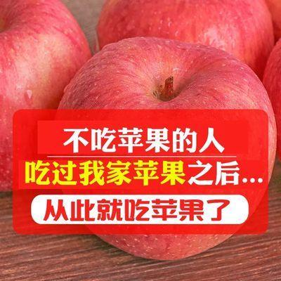 陕西高山红富士苹果水果3/5/10斤(70m-85m)脆甜多汁苹果新鲜水果