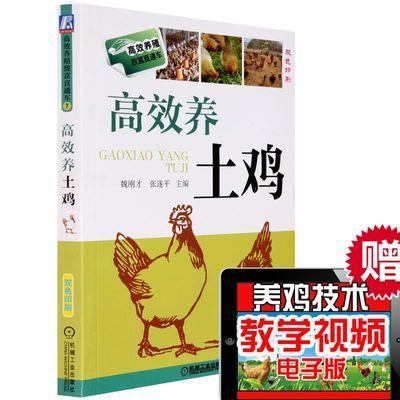 高效养土鸡 土鸡养殖技术大全书籍 养鸡技术书散 送养鸡视频
