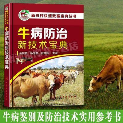 牛病防治新技术宝典 养牛技术教程书籍 兽医书籍牛病大全养牛书籍