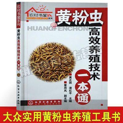 黄粉虫高效养殖技术一本通 黄粉虫养殖技术教程书籍