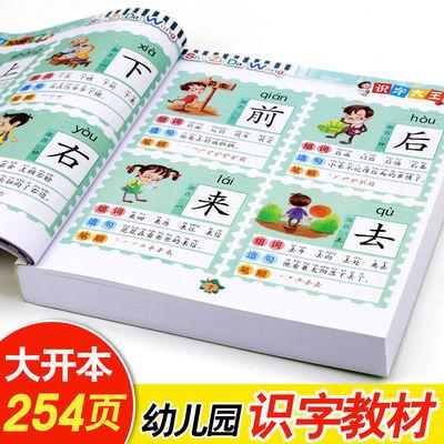 学前1016字儿童看图识字大王大班幼儿园教材认字书籍宝宝早教图书