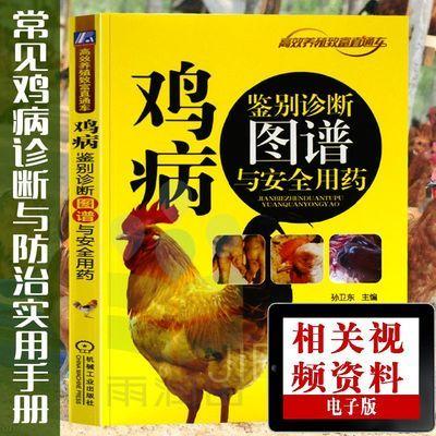 鸡病鉴别诊断图谱与安全用药养鸡书籍 鸡病防治技术书籍