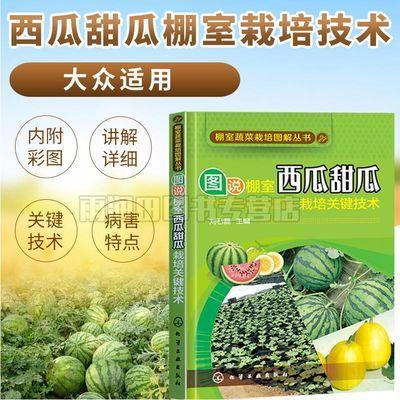 图说棚室西瓜甜瓜栽培关键技术西瓜种植栽培技术大全书籍育苗育种