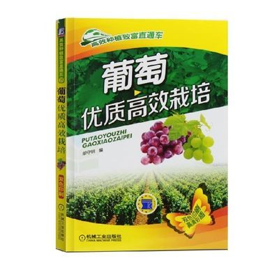 葡萄优质高效栽培 种植葡萄高效栽培与病虫害防治嫁接技术书籍