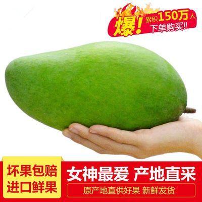 青芒果3/5/8/10斤装(单果200-1000g)新鲜水果大青芒果玉芒小青芒