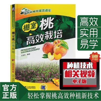 棚室桃高效栽培 桃种植技术大棚种植 桃高效种植技术书籍