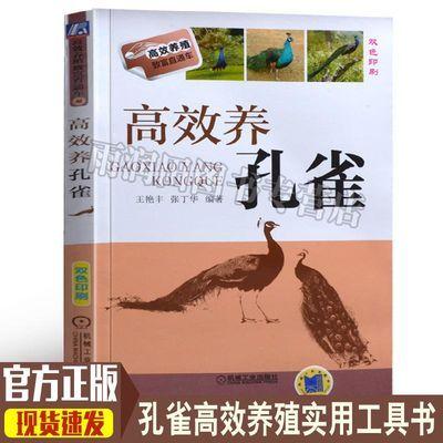 高效养孔雀 蓝孔雀养殖技术散养孔雀孔雀疾病治疗与防治技术书籍
