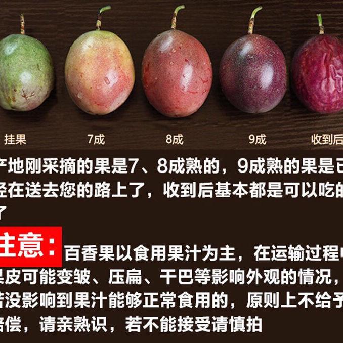广西百香果5斤大果一级1/2/3/10斤8个装新鲜特级水果现摘现发酸甜【2月4日发完】_3