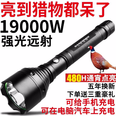捕蝎子灯手电充器激光瞄准夜钓测荧剂笔棒辊池太阳能筒小超强雅尼