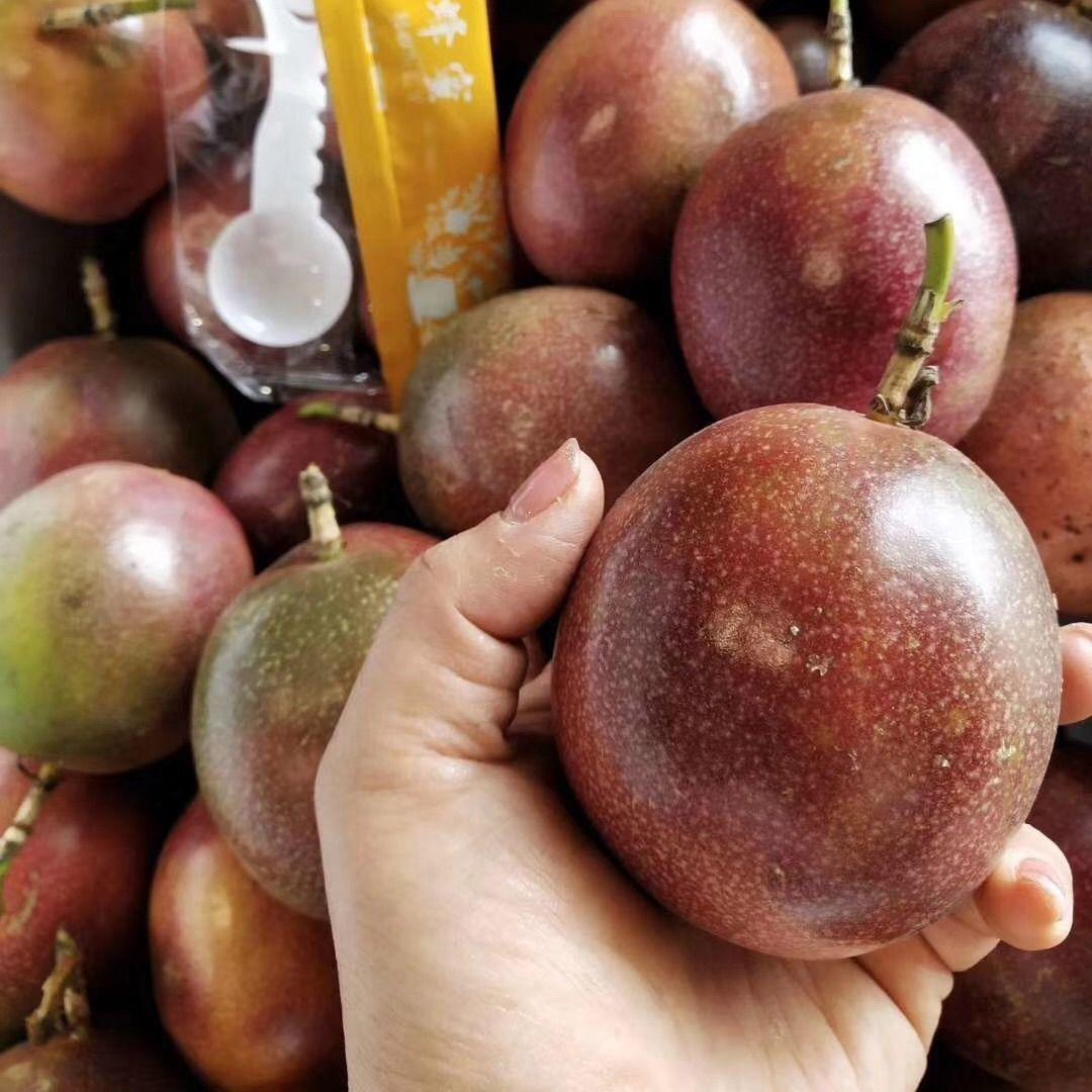 广西百香果5斤送开果器热带新鲜水果鸡蛋果现摘精装大红果1斤大果_4