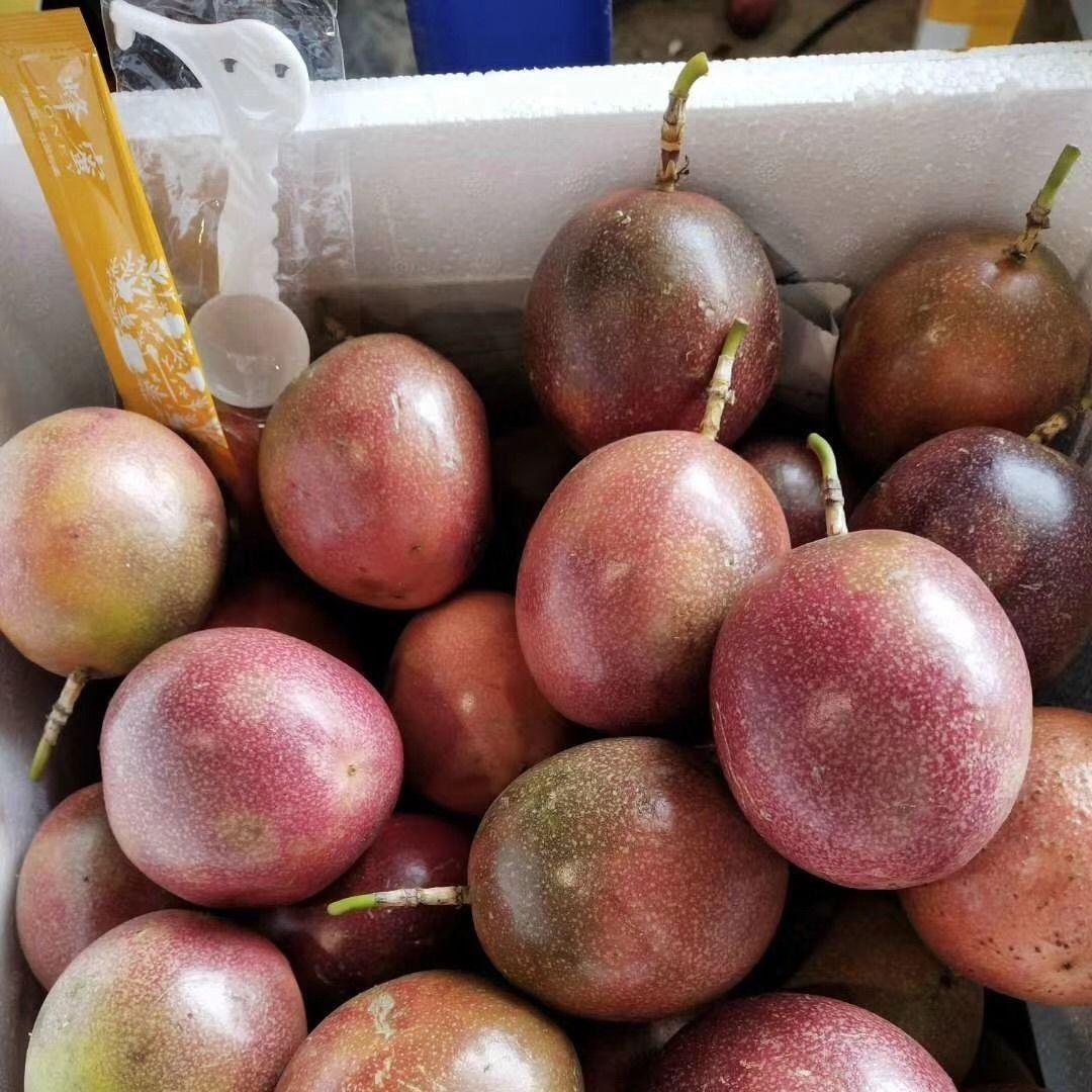 广西百香果5斤送开果器热带新鲜水果鸡蛋果现摘精装大红果1斤大果_6