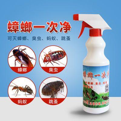 蟑螂一次净蟑螂药家用全窝端无色无味对人安全孕妇儿童适用