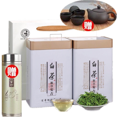 安吉白茶新茶安吉特产白茶绿茶茶叶灌装白茶茶叶【送杯子送茶具】
