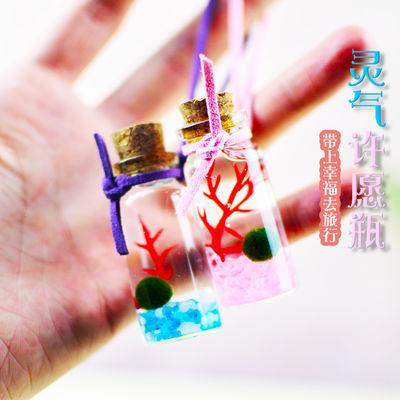 千花伴园艺 海藻球 生态瓶微景观marimo创意植物水培小盆栽 4.52元