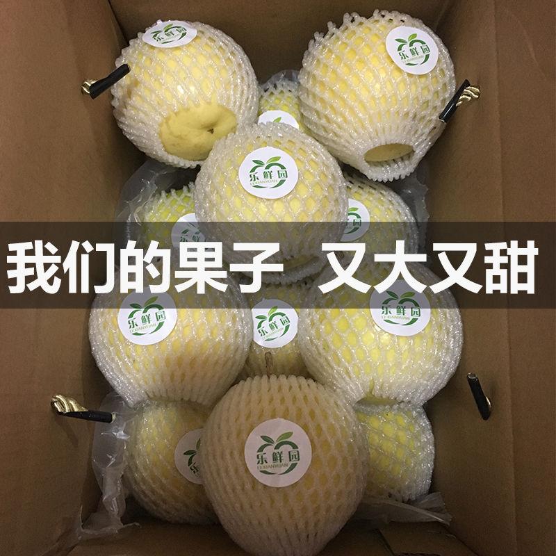 【13.8元抢20000件,抢完恢复14.8元】台湾黄金百香果大果5斤3斤12个热带孕妇新鲜水果黄色皮鸡蛋果批发_1