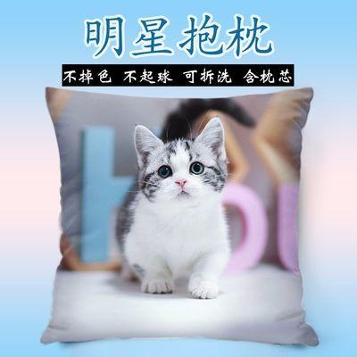 猫咪抱枕头可爱萌宠物来图定制照片双面diy图案靠垫枕女生日礼物