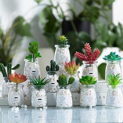 北欧盆栽ins风假多肉仿真植物简约装饰花桌面绿植小摆件室内客厅