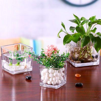 水培植物透明玻璃花瓶绿萝铜钱草白掌花盆方形多功能水养器皿容器